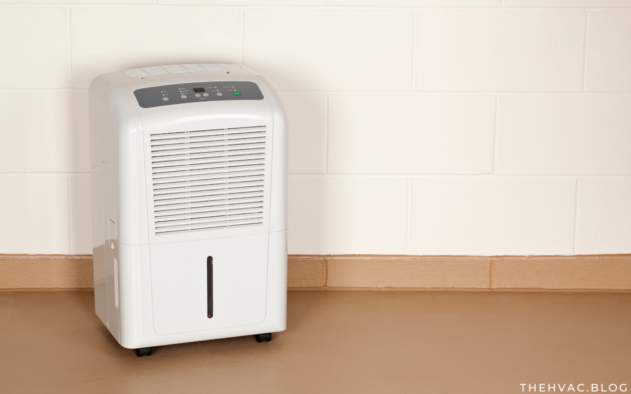 The Best Dehumidifiers for Basements
